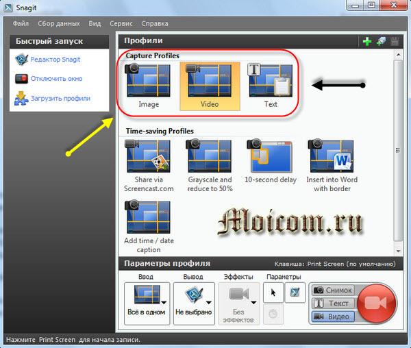 Как сделать скрин экрана - Snagit, профили