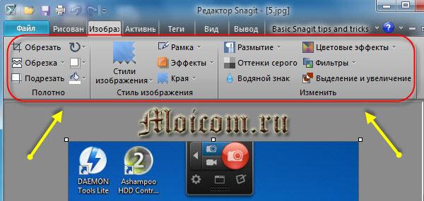 Как сделать скрин экрана - Snagit, вкладка изображение