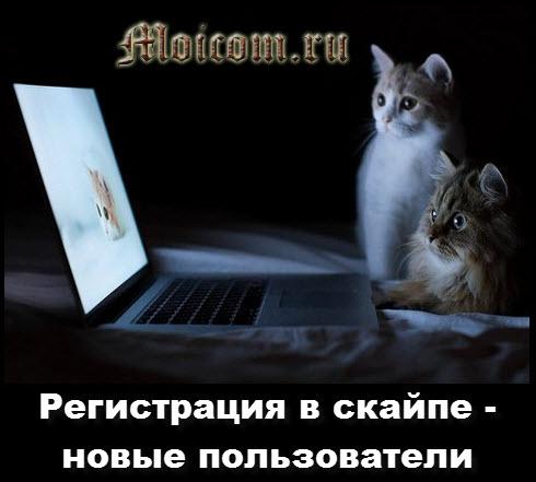 Регистрация в скайпе - новые пользователи