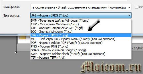 Как сделать скрин экрана - Snagit, сохранение и выбор типа файла