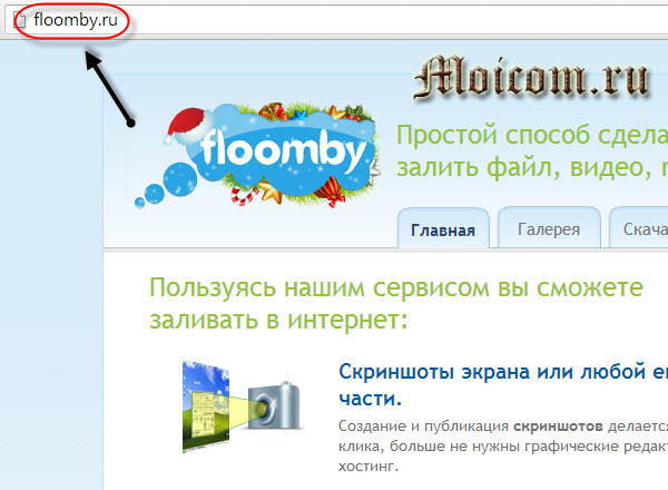 Сделать скриншот сайта - Floomby.ru