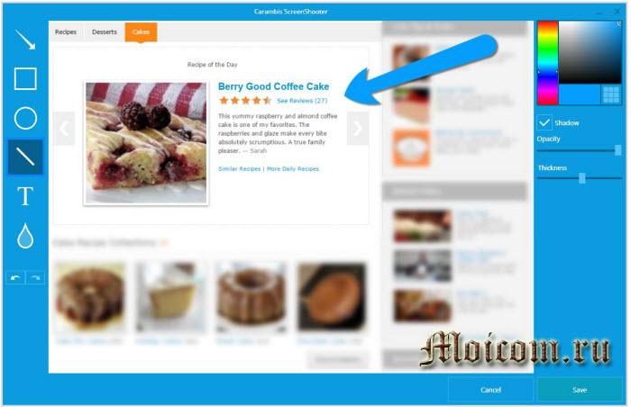 Сделать скриншот сайта - программа screenshooter