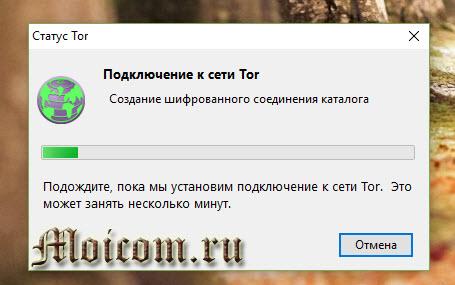 tor-browser-nastrojka-podklyuchenie-k-seti