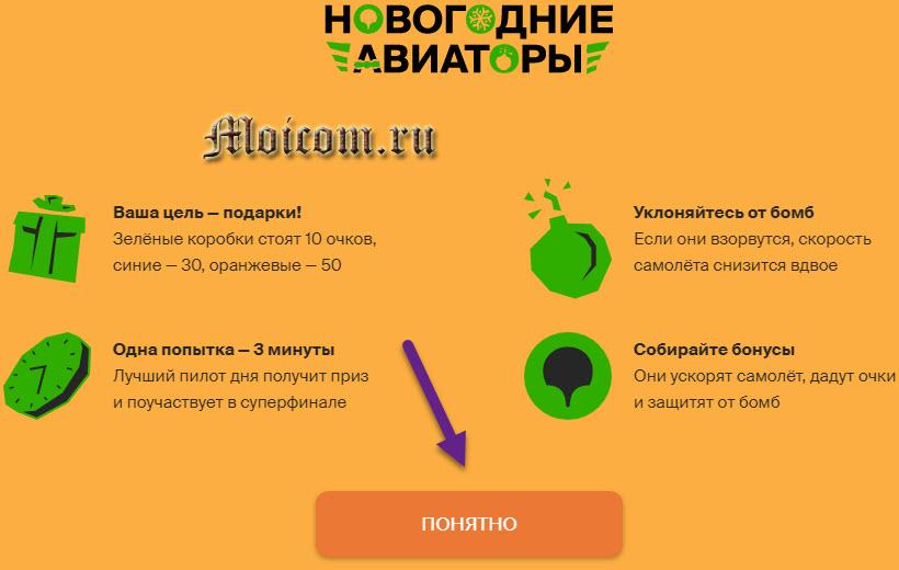 Новогодние авиаторы 2гис, newyear.2gis.ru - вводная информация