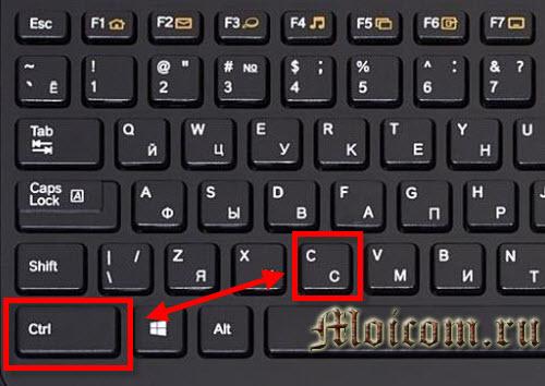 как вставить текст с помощью клавиатуры - CTRL+C