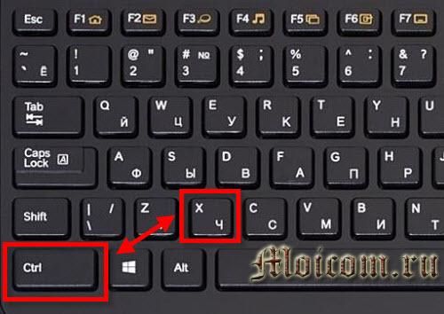 как вставить текст с помощью клавиатуры - CTRL+X